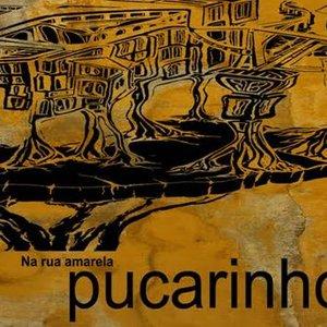 Bild för 'Pucarinho'