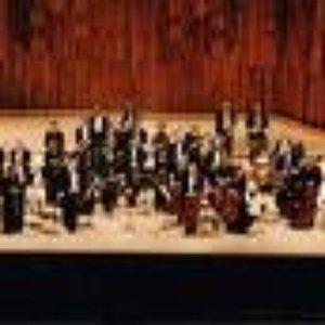 Image for 'Swedish Radio Choir/Stockholm Chamber Choir/Berliner Philharmoniker/Riccardo Muti'