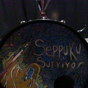Image for 'Seppuku Survivor'