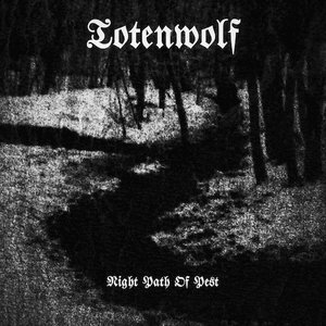 Image for 'Totenwolf'