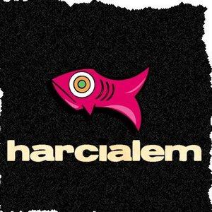 Image pour 'Harcıalem'