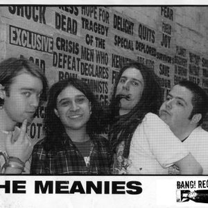 Image for 'The Meanies'