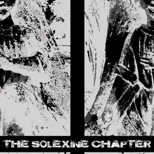 Image for 'The Solexine Chapter'