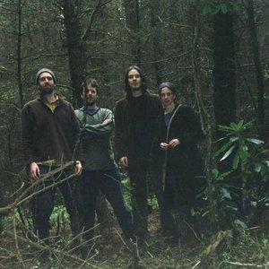 Imagen de 'The Magickal Folk of the Faraway Tree'