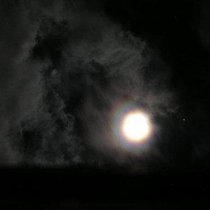 Image for 'MOHENGADZILLA'