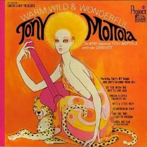 Image pour 'Tony Mottola and The Groovies'