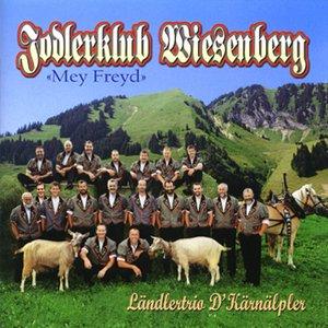 Image for 'Jodlerklub Wiesenberg'