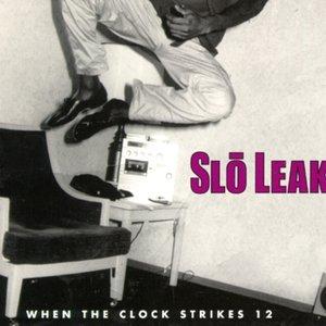 Image for 'Slo Leak'