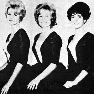 Image for 'Debbie & the Darnels'