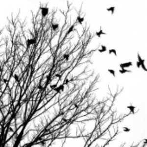 Image for 'Sad Winter'