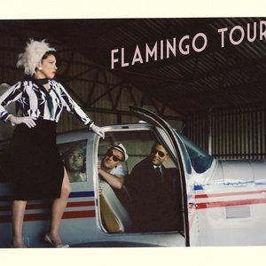 Image for 'Flamingo Tours'