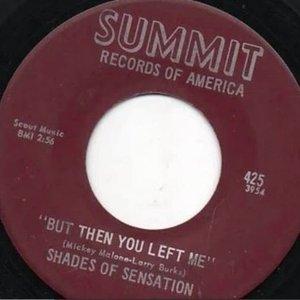 Imagem de 'Shades Of Sensation'