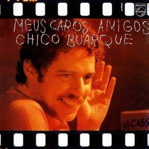 Image for 'Meus caros amigos'