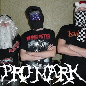 Image for 'Pro Mark'
