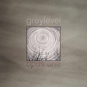 Image for 'Greylevel'