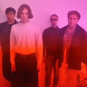 Bild för 'Younghusband'