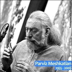 Image for 'Parviz Meshkatian and Jamshid Mohebi'