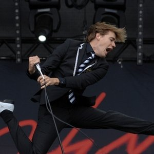 Immagine per 'The Hives'