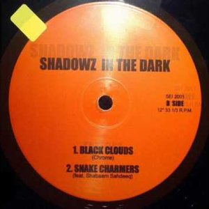Image pour 'Shadowz In Da Dark'
