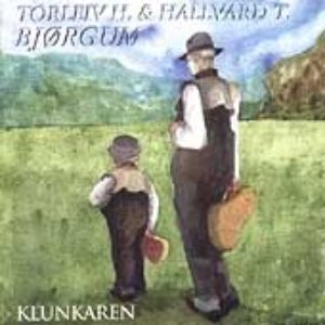 Image for 'Torleiv H Bjørgum & Hallvard T. Bjørgum'