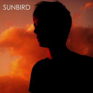 Image for 'Sun bird'