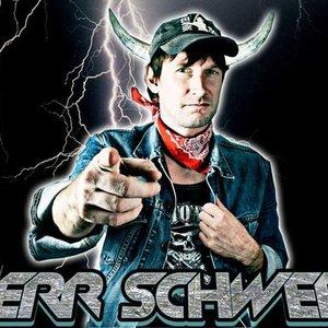 Image for 'Herr Schwers'