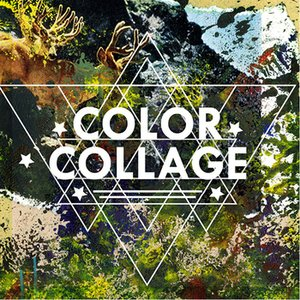 Image for 'Color Collage'