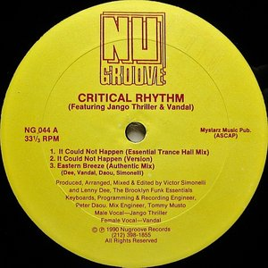 Image for 'Critical Rhythm'