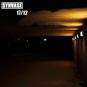 Image for 'synvase'