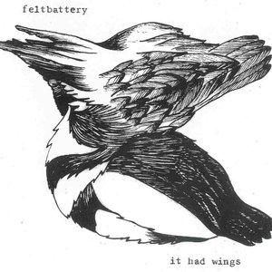 Image for 'Feltbattery'