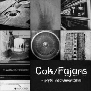 Image for 'Cok & Fajans'