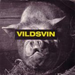 Image for 'Vildsvin'