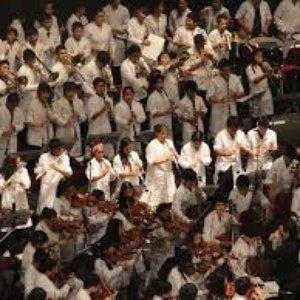 Image for 'Orquesta y Coros del Teatro Nacional'