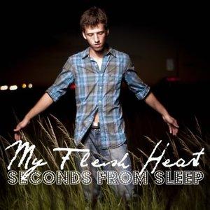 Image for 'My Flesh Heart'