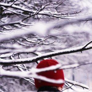 Image for 'Rainbosws'