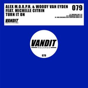 Image for 'Alex M.O.R.P.H. & Woody van Eyden Feat. Michelle Citrin'