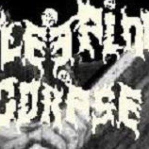 Imagem de 'Sleeping Corpse'