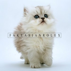 Image for 'Fake Asian Rolex'