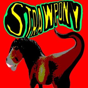Image for 'StrawPony'