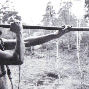 Image for 'Fornnordiska klanger'