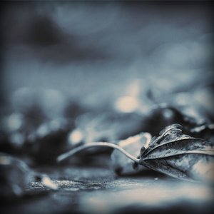 Image for 'nExow & JacM'