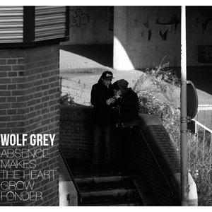 Image pour 'Wolf Grey'