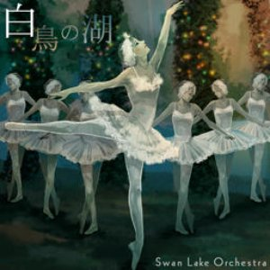 Image for 'Swan Lake Orchestra'