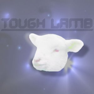 Image for 'Tough lamb'