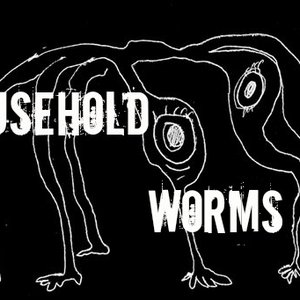 Image for 'Household worms'