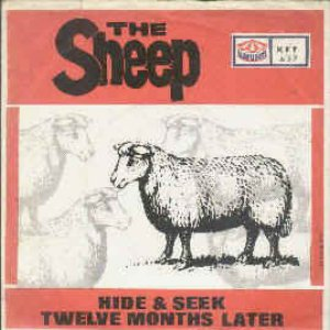 Bild för 'The Sheep'