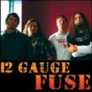 Image for '12 Gauge Fuse'