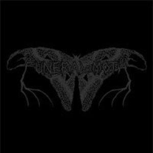 Image for 'Funeral Moth'