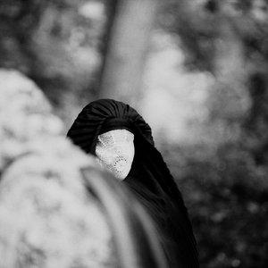 Imagem de 'Wooden Veil'