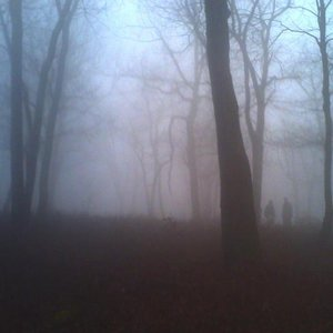 Image for 'You You Dark Forest'